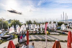 Rooster Laser Európa Kupa & BYC Kupa 2017